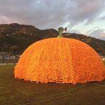 クリスマスオレンジフェスティバル 八幡浜みなっとで待ってます!