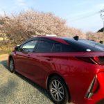 【2020年春 桜の下のZVW52プリウスPHV 花見は盛り上がらない!】