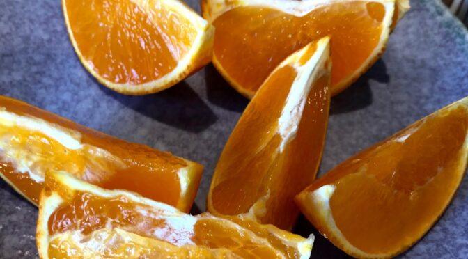 愛媛には次々と 柑橘の 新種が 現れるわけは?