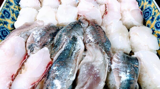 宇和海の魚は美味しい。しかしプラスチックゴミのせいで食べれなくなる日が来るのか?